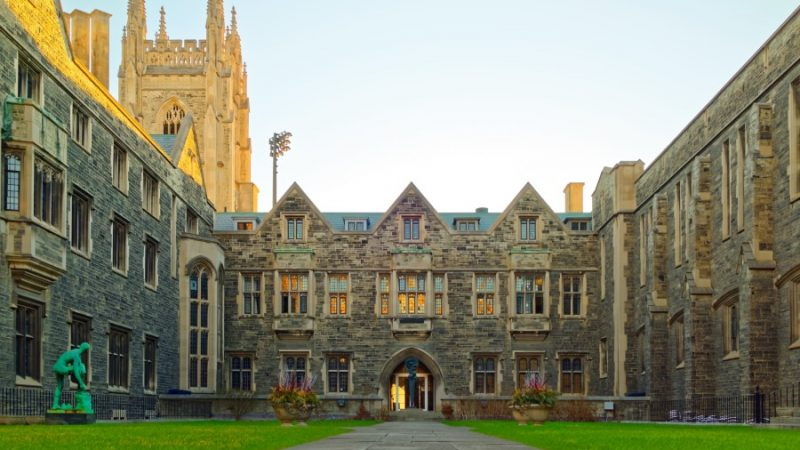 Where CEOs of Big Companies Went to College